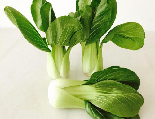 Pak Choy… una hortaliza muy sana!