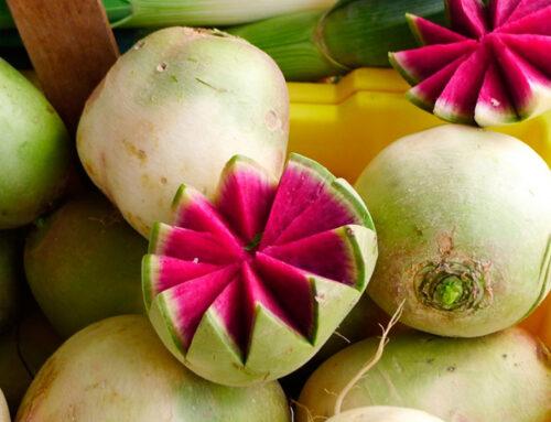 Rábano sandía, una colorida hortaliza